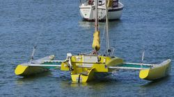 We all live in a Yellow Trimaran, a Yellow Trimaran, a Yellow Trimaran!