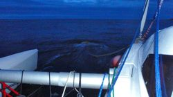 Terrible flow past the mooring buoy