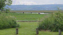 Looking across the River Dee wildlife reserve from the Old Baths at Parkgate